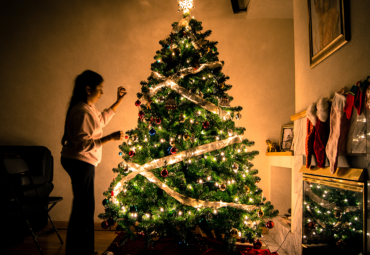 How To: Get, Care for & Dispose of Your Christmas Tree Correctly